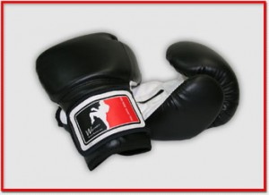 Ken Rose  Muay Thai Training Gloves